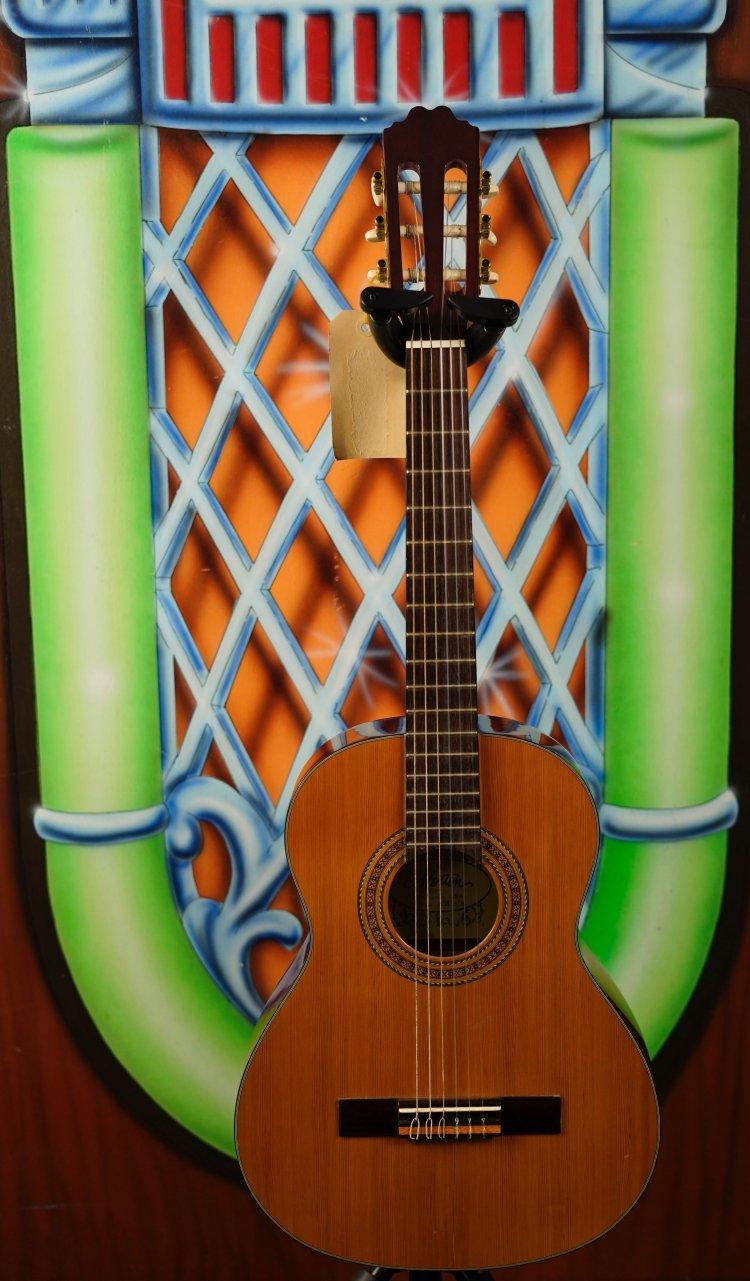 Motion TC-983 GLS 3/4 nylons gitaar